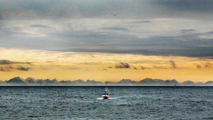 Matmerk Lofoten lofotveggen fiske baat sjo landskap foto eivor eriksen